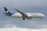 PASSENGERさんが、ロンドン・ヒースロー空港で撮影したアエロメヒコ航空 787-8 Dreamlinerの航空フォト(写真)