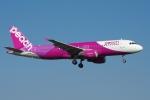 zettaishinさんが、成田国際空港で撮影したピーチ A320-214の航空フォト(写真)