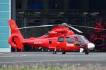 はるかのパパさんが、東京ヘリポートで撮影した東京消防庁航空隊 AS365N3 Dauphin 2の航空フォト(写真)
