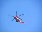 kamonhasiさんが、静岡ヘリポートで撮影した東京消防庁航空隊 EC225LP Super Puma Mk2+の航空フォト(写真)