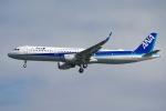 zettaishinさんが、羽田空港で撮影した全日空 A321-211の航空フォト(写真)
