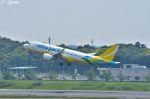 吉田高士さんが、成田国際空港で撮影したセブパシフィック航空 A320-214の航空フォト(写真)