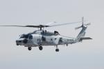 TRdenさんが、名古屋飛行場で撮影した海上自衛隊 SH-60Kの航空フォト(写真)