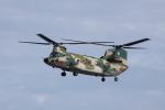 TRdenさんが、静浜飛行場で撮影した航空自衛隊 CH-47J/LRの航空フォト(写真)