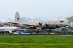 bigfoot11さんが、済州国際空港で撮影した大韓民国海軍 P-3CK Orionの航空フォト(写真)