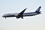妄想竹さんが、羽田空港で撮影した全日空 787-9の航空フォト(写真)