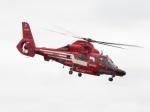 ヒリュウさんが、立川飛行場で撮影した東京消防庁航空隊 AS365N3 Dauphin 2の航空フォト(写真)