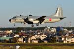 はるかのパパさんが、入間飛行場で撮影した航空自衛隊 YS-11A-402EBの航空フォト(写真)