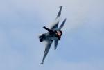 ビッグジョンソンさんが、築城基地で撮影した航空自衛隊 F-2Aの航空フォト(写真)
