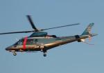 TRdenさんが、名古屋飛行場で撮影した京都府警察 A109E Powerの航空フォト(写真)