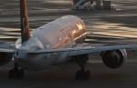 harahara555さんが、羽田空港で撮影した全日空 777-381/ERの航空フォト(写真)
