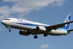 kansai-spotterさんが、伊丹空港で撮影した全日空 737-881の航空フォト(写真)
