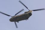 eagletさんが、横須賀基地で撮影した陸上自衛隊 CH-47Jの航空フォト(写真)