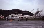 harahara555さんが、館山航空基地で撮影した海上自衛隊 MH-53Eの航空フォト(写真)