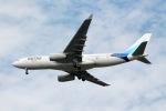 だいすけさんが、ジョン・F・ケネディ国際空港で撮影したタメ A330-243の航空フォト(写真)