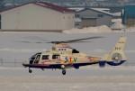 はれ747さんが、札幌飛行場で撮影した北海道航空 AS365N2 Dauphin 2の航空フォト(写真)
