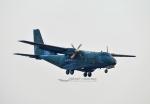 bigfoot11さんが、烏山空軍基地で撮影した大韓民国空軍 CN-235の航空フォト(写真)