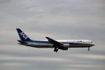 ハム太郎さんが、成田国際空港で撮影した全日空 767-381/ERの航空フォト(写真)