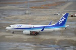 空が大好き!さんが、中部国際空港で撮影した全日空 737-781の航空フォト(写真)