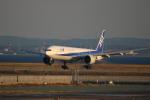 A350XWB-HNDさんが、羽田空港で撮影した全日空 777-381/ERの航空フォト(写真)