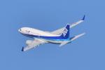 subtakaさんが、中部国際空港で撮影した全日空 737-781の航空フォト(写真)