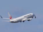 subtakaさんが、中部国際空港で撮影した日本航空 737-846の航空フォト(写真)
