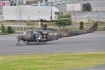 500さんが、東京臨海広域防災公園ヘリポートで撮影した陸上自衛隊 UH-1Jの航空フォト(写真)