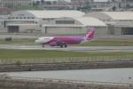 krozさんが、那覇空港で撮影したピーチ A320-214の航空フォト(写真)