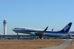 LGM1928さんが、中部国際空港で撮影した全日空 737-881の航空フォト(写真)