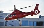 skyclearさんが、東京ヘリポートで撮影した東京消防庁航空隊 AS365N3 Dauphin 2の航空フォト(写真)
