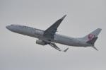 空が大好き!さんが、関西国際空港で撮影した日本航空 737-846の航空フォト(写真)
