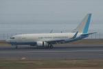 ほーねっともきさんが、羽田空港で撮影した大韓航空 737-7B5 BBJの航空フォト(写真)