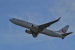 tecasoさんが、関西国際空港で撮影した日本航空 737-846の航空フォト(写真)