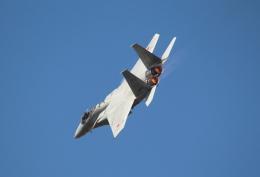 Koenig117さんが、岐阜基地で撮影した航空自衛隊 F-15J Eagleの航空フォト(写真)