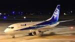Take51さんが、鹿児島空港で撮影したANAウイングス 737-5L9の航空フォト(写真)