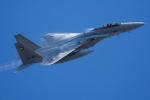 Tomo-Papaさんが、茨城空港で撮影した航空自衛隊 F-15J Eagleの航空フォト(写真)