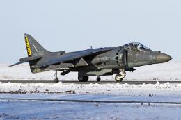 Echo-Kiloさんが、千歳基地で撮影したアメリカ海兵隊 AV-8B(R) Harrier II+の航空フォト(写真)