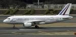 planetさんが、成田国際空港で撮影したフランス空軍 A319-115CJの航空フォト(写真)