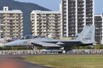 ばとさんが、岐阜基地で撮影した航空自衛隊 F-15DJ Eagleの航空フォト(写真)