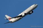 かずかずさんが、羽田空港で撮影した日本航空 737-846の航空フォト(写真)
