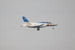 Dickiesさんが、浜松基地で撮影した航空自衛隊 T-4の航空フォト(写真)