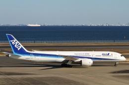 camelliaさんが、羽田空港で撮影した全日空 787-9の航空フォト(写真)