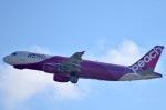 ジャコビさんが、関西国際空港で撮影したピーチ A320-214の航空フォト(写真)