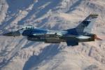 AkiChup0nさんが、ネリス空軍基地で撮影したアメリカ空軍 F-16C-25-CF Fighting Falconの航空フォト(写真)