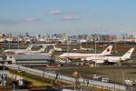 羽田空港 - Tokyo International Airport [HND/RJTT]で撮影されたロシア航空 - Rossiya [FV/SDM]の航空機写真
