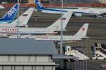 たなしんさんが、羽田空港で撮影したロシア航空 A319-115の航空フォト(写真)