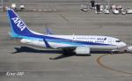 RINA-200さんが、中部国際空港で撮影した全日空 737-781の航空フォト(写真)