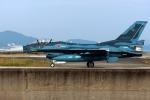 いおりさんが、築城基地で撮影した航空自衛隊 F-2Aの航空フォト(写真)