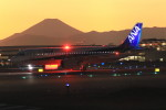 VIPERさんが、羽田空港で撮影した全日空 A320-271Nの航空フォト(写真)
