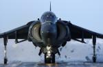 VIPERさんが、千歳基地で撮影したアメリカ海兵隊 AV-8B Harrier II+の航空フォト(写真)